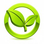 eco friendly detailing logo